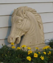 horse_head_in_front_of_lounge.jpg