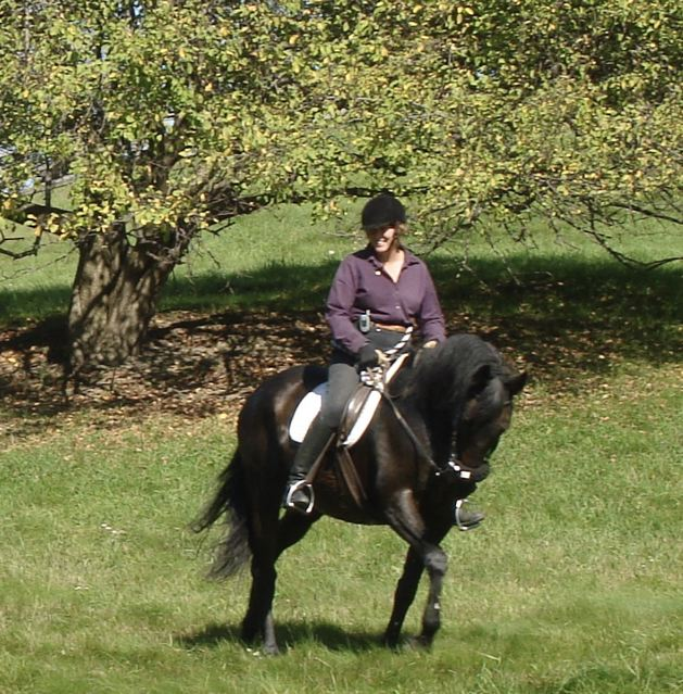 kristin_at_sewickely_hunter_pace_2006.jpg